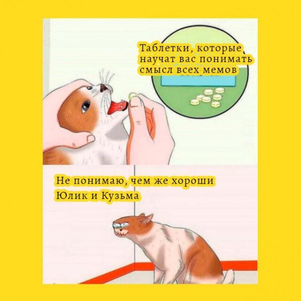 🔝 Мемы в которых прославляют блогеров Юлика и Кузьму по их собственной просьбе