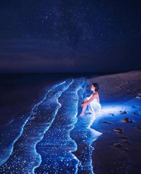 Вы ахнете от восхищения смотря на райские кадры чудесной природы